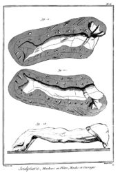 moulageencyclopedie2
