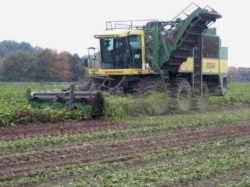 arracheuse_(Sugarbeet_harvester)